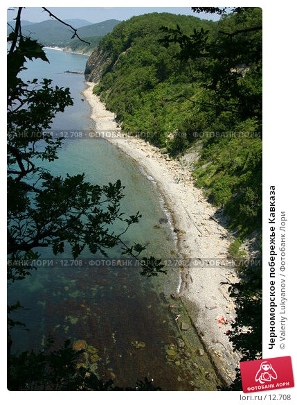 Черноморское побережье Кавказа, фото № 12708, снято 5 июля 2004 г. (c) Valeriy Lukyanov / Фотобанк Лори