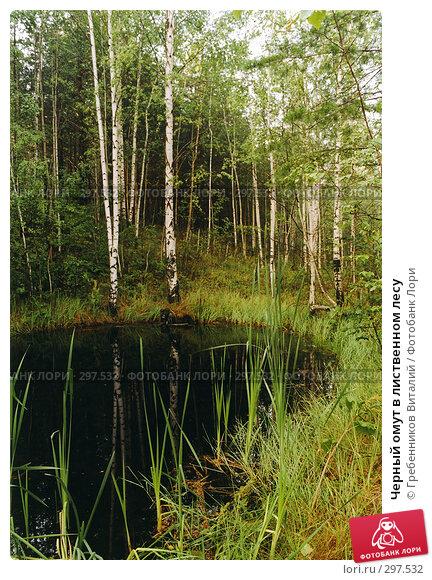 Черный омут в лиственном лесу, фото № 297532, снято 28 марта 2017 г. (c) Гребенников Виталий / Фотобанк Лори