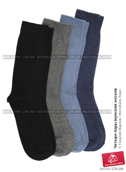 Четыре пары мужских носков, фото № 278244, снято 19 апреля 2008 г. (c) Георгий Марков / Фотобанк Лори