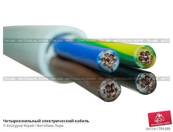 Купить «Четырехжильный электрический кабель», фото № 794688, снято 14 ноября 2008 г. (c) Косоуров Юрий / Фотобанк Лори
