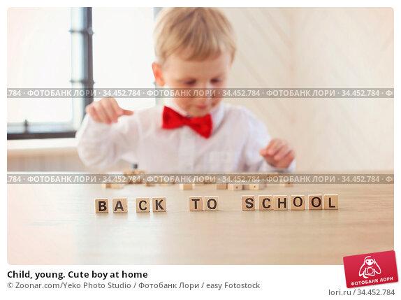 Child, young. Cute boy at home. Стоковое фото, фотограф Zoonar.com/Yeko Photo Studio / easy Fotostock / Фотобанк Лори