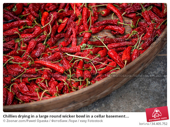 Chillies drying in a large round wicker bowl in a cellar basement... Стоковое фото, фотограф Zoonar.com/Pawel Opaska / easy Fotostock / Фотобанк Лори