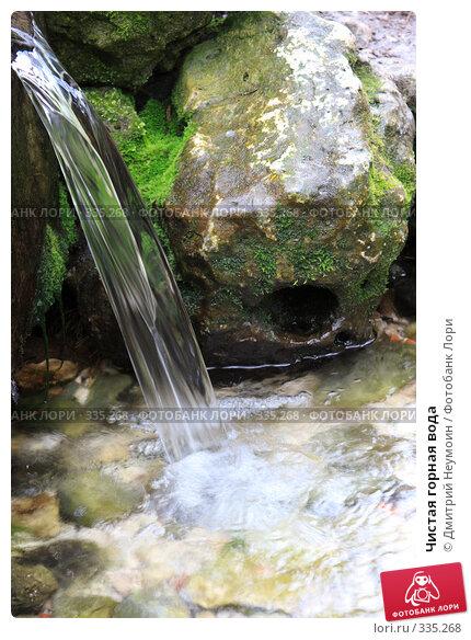 Чистая горная вода, эксклюзивное фото № 335268, снято 27 апреля 2008 г. (c) Дмитрий Неумоин / Фотобанк Лори