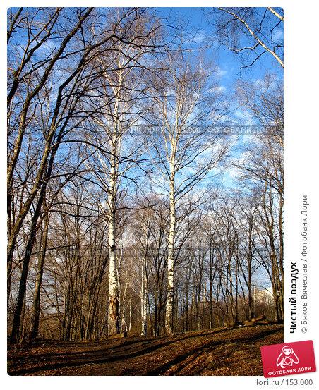 Чистый воздух, фото № 153000, снято 8 апреля 2007 г. (c) Бяков Вячеслав / Фотобанк Лори