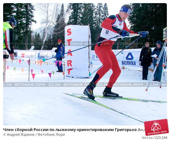 Член сборной России по лыжному ориентированию Григорьев Андрей, фото № 223244, снято 18 января 2017 г. (c) Андрей Жданов / Фотобанк Лори