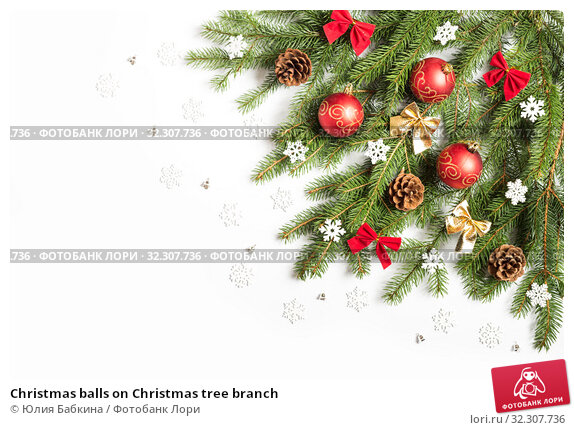 Купить «Christmas balls on Christmas tree branch», фото № 32307736, снято 19 октября 2019 г. (c) Юлия Бабкина / Фотобанк Лори