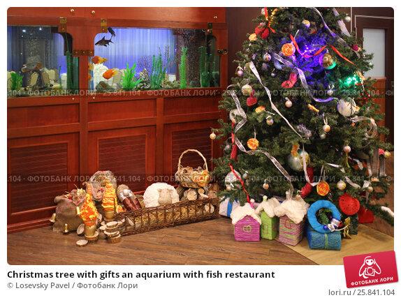 Купить «Christmas tree with gifts an aquarium with fish restaurant», фото № 25841104, снято 4 декабря 2014 г. (c) Losevsky Pavel / Фотобанк Лори