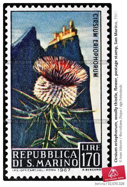 Cirsium eriophorum, woolly thistle, flower, postage stamp, San Marino, 1967. (2013 год). Редакционное фото, фотограф Ivan Vdovin / age Fotostock / Фотобанк Лори