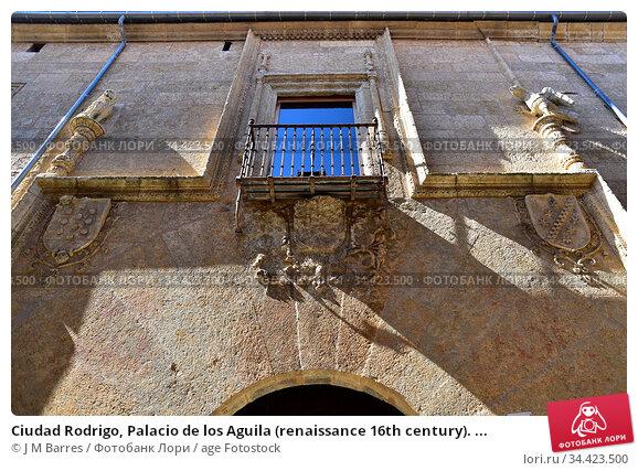 Ciudad Rodrigo, Palacio de los Aguila (renaissance 16th century). ... Стоковое фото, фотограф J M Barres / age Fotostock / Фотобанк Лори