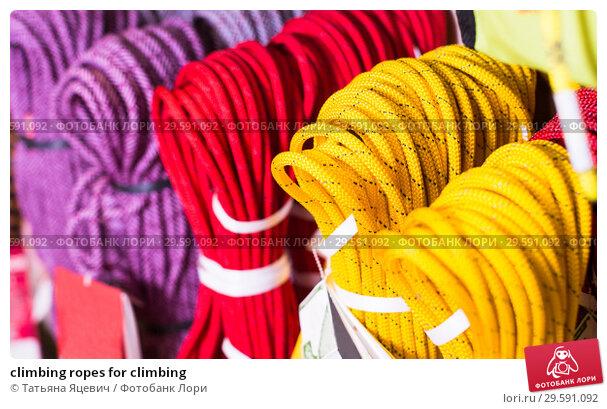 Купить «climbing ropes for climbing», фото № 29591092, снято 24 февраля 2017 г. (c) Татьяна Яцевич / Фотобанк Лори