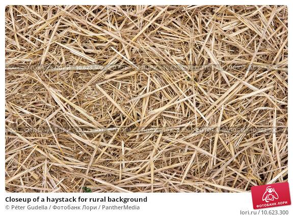 Closeup of a haystack for rural background. Стоковое фото, фотограф Péter Gudella / PantherMedia / Фотобанк Лори