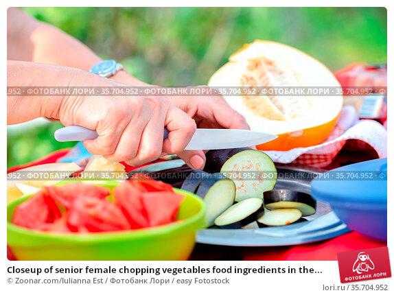 Closeup of senior female chopping vegetables food ingredients in the... Стоковое фото, фотограф Zoonar.com/Iulianna Est / easy Fotostock / Фотобанк Лори