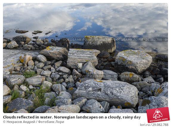 Купить «Clouds reflected in water. Norwegian landscapes on a cloudy, rainy day», фото № 29082788, снято 9 августа 2018 г. (c) Некрасов Андрей / Фотобанк Лори