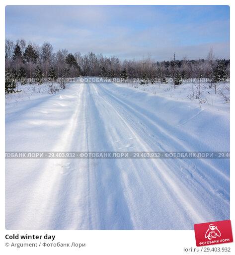 Купить «Cold winter day», фото № 29403932, снято 25 января 2013 г. (c) Argument / Фотобанк Лори