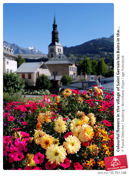 Colourful flowers in the village of Saint Gervais les Bains in the... Стоковое фото, фотограф Pascal Deloche / Godong / age Fotostock / Фотобанк Лори