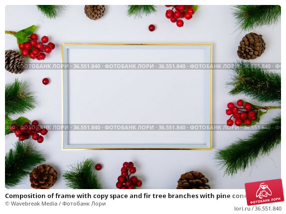 Composition of frame with copy space and fir tree branches with pine cones on white background. Стоковое фото, агентство Wavebreak Media / Фотобанк Лори