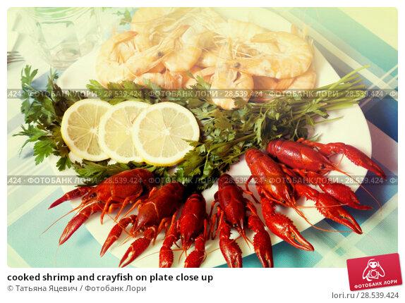 Купить «cooked shrimp and crayfish on plate close up», фото № 28539424, снято 19 июня 2018 г. (c) Татьяна Яцевич / Фотобанк Лори