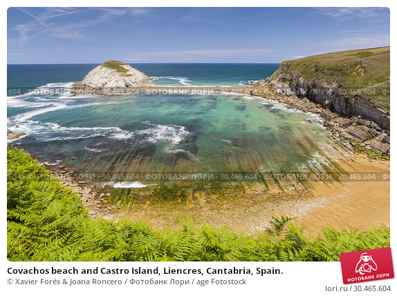 Covachos beach and Castro Island, Liencres, Cantabria, Spain. Стоковое фото, фотограф Xavier Forés & Joana Roncero / age Fotostock / Фотобанк Лори