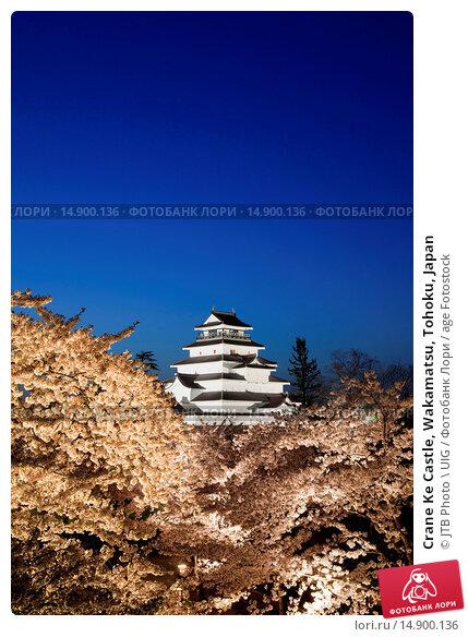 Купить «Crane Ke Castle, Wakamatsu, Tohoku, Japan», фото № 14900136, снято 21 июня 2018 г. (c) age Fotostock / Фотобанк Лори