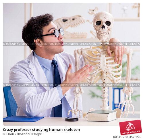 Crazy professor studying human skeleton. Стоковое фото, фотограф Elnur / Фотобанк Лори