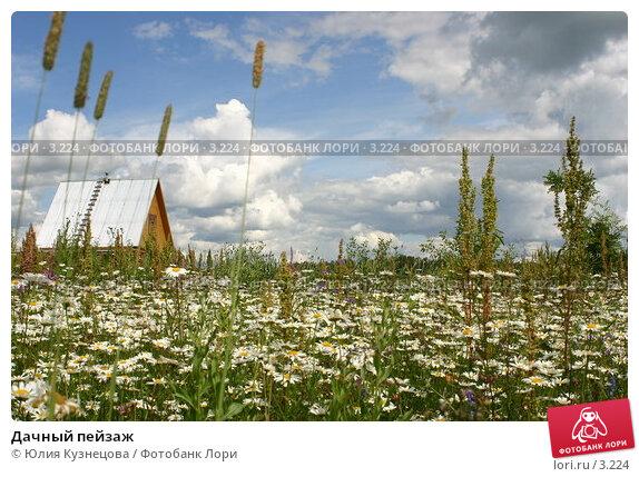 Дачный пейзаж, фото № 3224, снято 18 августа 2017 г. (c) Юлия Кузнецова / Фотобанк Лори