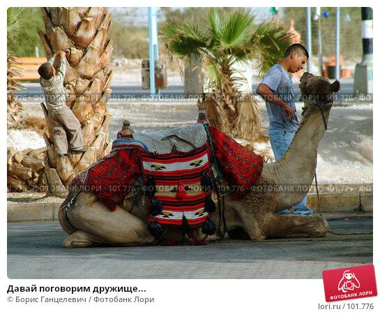 Давай поговорим дружище..., фото № 101776, снято 18 октября 2007 г. (c) Борис Ганцелевич / Фотобанк Лори