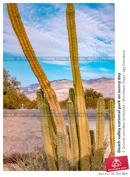 Death valley national park on sunny day. Стоковое фото, фотограф Zoonar.com/Alex Grichenko / age Fotostock / Фотобанк Лори