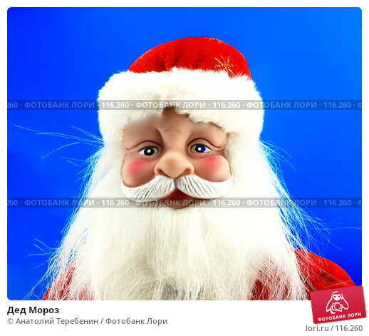 Дед Мороз, фото № 116260, снято 10 ноября 2007 г. (c) Анатолий Теребенин / Фотобанк Лори