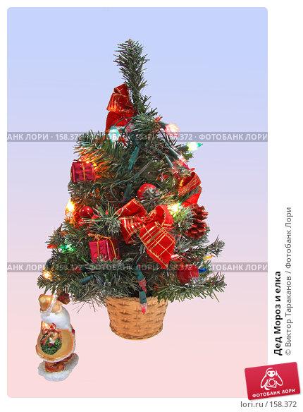 Купить «Дед Мороз и елка», эксклюзивное фото № 158372, снято 25 апреля 2018 г. (c) Виктор Тараканов / Фотобанк Лори