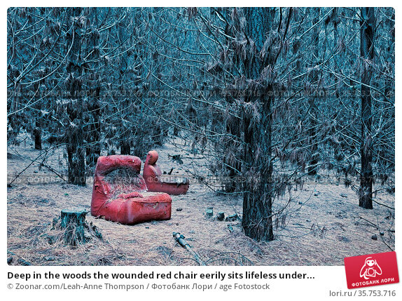 Deep in the woods the wounded red chair eerily sits lifeless under... Стоковое фото, фотограф Zoonar.com/Leah-Anne Thompson / age Fotostock / Фотобанк Лори