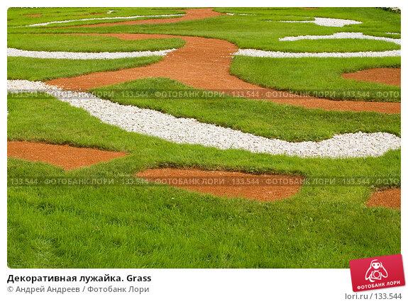 Декоративная лужайка. Grass, фото № 133544, снято 26 августа 2006 г. (c) Андрей Андреев / Фотобанк Лори