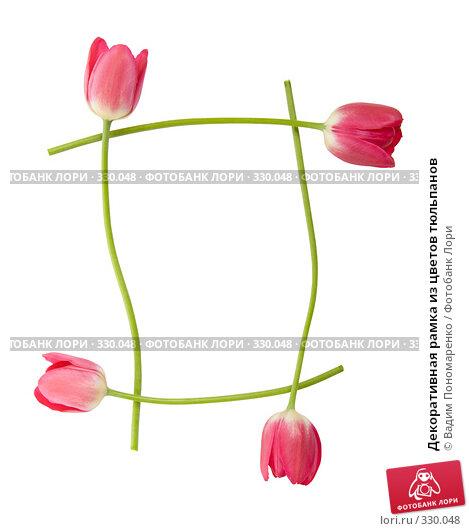 Декоративная рамка из цветов тюльпанов, фото № 330048, снято 27 мая 2008 г. (c) Вадим Пономаренко / Фотобанк Лори