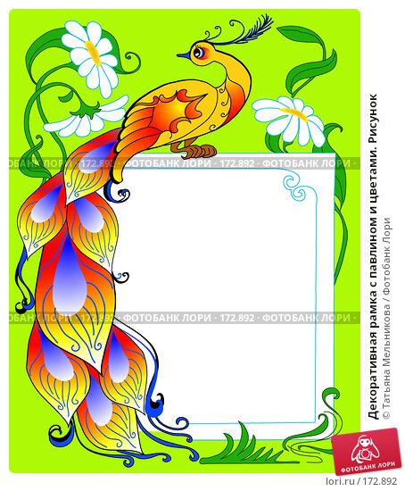 Купить «Декоративная рамка с павлином и цветами. Рисунок», иллюстрация № 172892 (c) Татьяна Мельникова / Фотобанк Лори