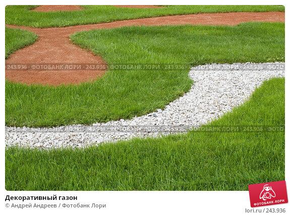 Декоративный газон, фото № 243936, снято 26 августа 2006 г. (c) Андрей Андреев / Фотобанк Лори