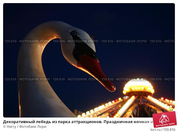 Купить «Декоративный лебедь из парка аттракционов. Праздничная ночная иллюминация на качели в парке аттракционов», фото № 159816, снято 11 июня 2005 г. (c) Harry / Фотобанк Лори
