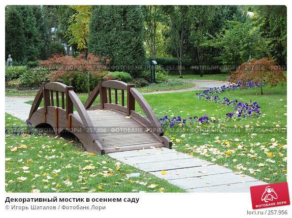 Декоративный мостик в осеннем саду, фото № 257956, снято 31 октября 2007 г. (c) Игорь Шаталов / Фотобанк Лори
