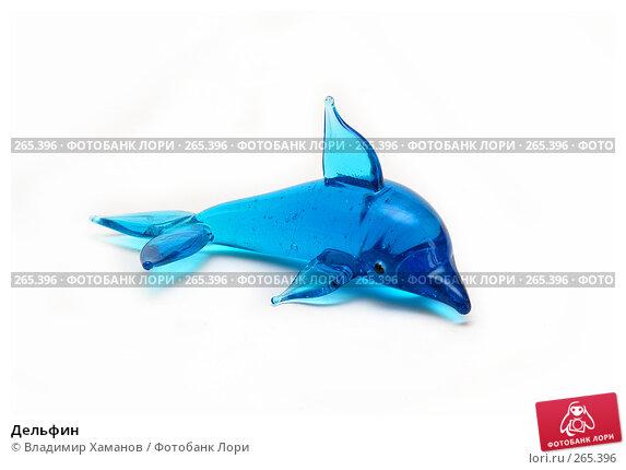 Дельфин, фото № 265396, снято 10 марта 2008 г. (c) Владимир Хаманов / Фотобанк Лори