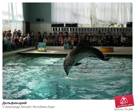 Дельфинарий, фото № 15244, снято 6 мая 2006 г. (c) Александр Легкий / Фотобанк Лори