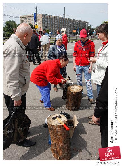 День гвоздя, фото № 316544, снято 8 июня 2008 г. (c) Юрий Синицын / Фотобанк Лори