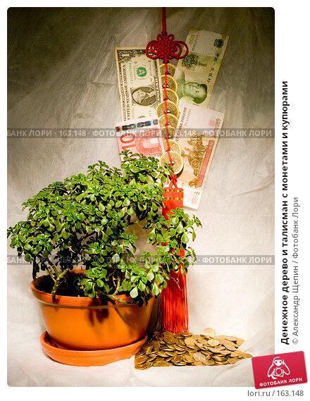 Денежное дерево и талисман с монетами и купюрами, эксклюзивное фото № 163148, снято 27 декабря 2007 г. (c) Александр Щепин / Фотобанк Лори