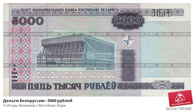 Купить «Деньги Белоруссии - 5000 рублей», фото № 183620, снято 23 марта 2019 г. (c) Игорь Веснинов / Фотобанк Лори