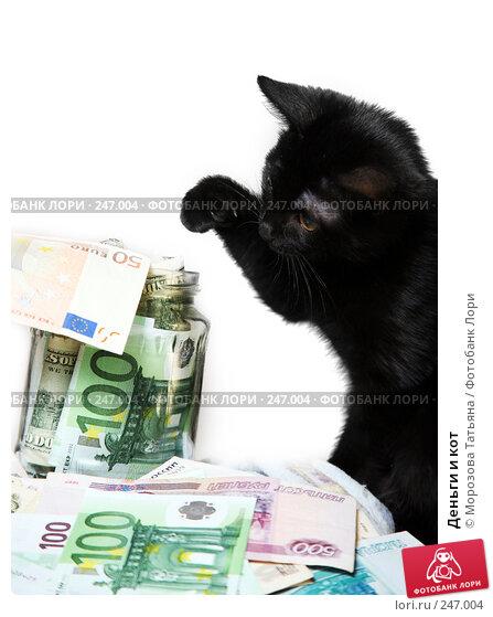 Деньги и кот, фото № 247004, снято 9 апреля 2008 г. (c) Морозова Татьяна / Фотобанк Лори