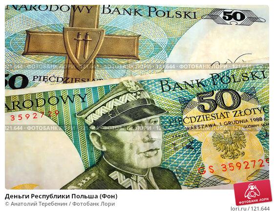 Деньги Республики Польша (Фон), фото № 121644, снято 18 ноября 2007 г. (c) Анатолий Теребенин / Фотобанк Лори