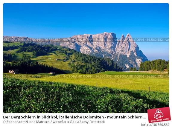 Der Berg Schlern in Südtirol, italienische Dolomiten - mountain Schlern... Стоковое фото, фотограф Zoonar.com/Liane Matrisch / easy Fotostock / Фотобанк Лори