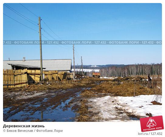 Деревенская жизнь, фото № 127432, снято 30 марта 2007 г. (c) Бяков Вячеслав / Фотобанк Лори