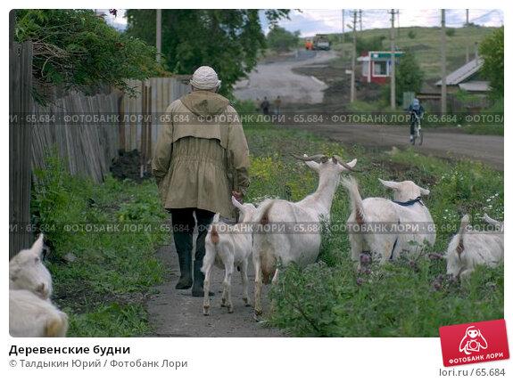 Деревенские будни, фото № 65684, снято 28 июля 2017 г. (c) Талдыкин Юрий / Фотобанк Лори