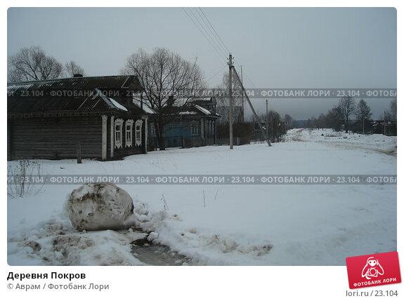 Деревня Покров, фото № 23104, снято 10 марта 2007 г. (c) Аврам / Фотобанк Лори