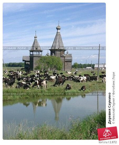 Купить «Деревня Саунино», фото № 2872, снято 20 августа 2003 г. (c) Николай Гернет / Фотобанк Лори
