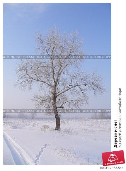 Дерево и снег, фото № 153544, снято 17 декабря 2007 г. (c) Сергей Девяткин / Фотобанк Лори