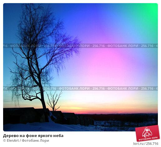 Дерево на фоне яркого неба, фото № 256716, снято 21 января 2017 г. (c) ElenArt / Фотобанк Лори